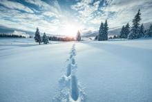 Image from iStock